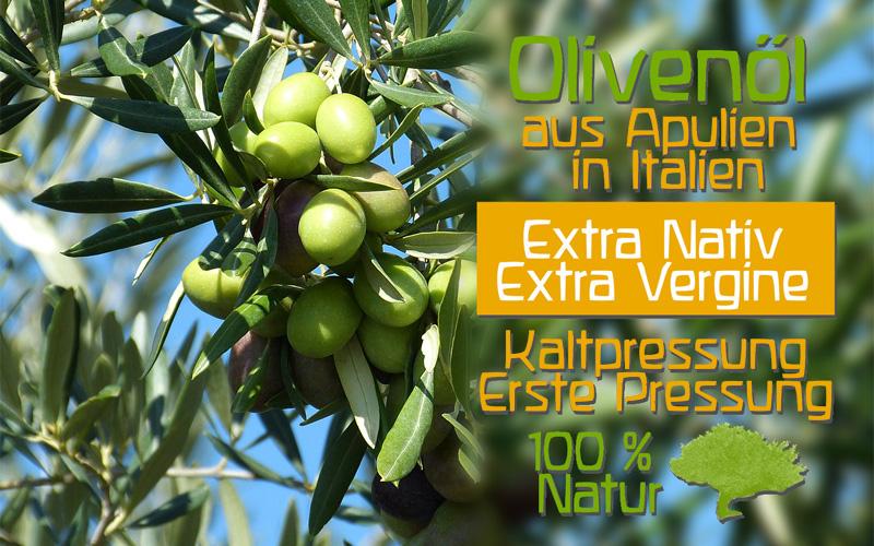 olivenoel-italien-bioqualitaet-apulien